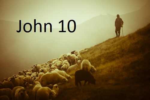 The Good Shepherd – John 10